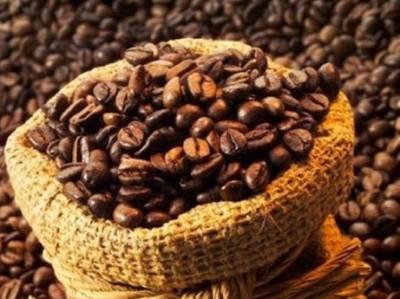 La ruta del café en Chiapas